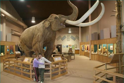 110507_Museum_Mammoth_Site (3)