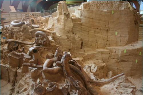 110507_Museum_Mammoth_Site (4)