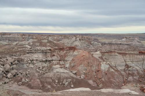 Petrified-Forest-Arizona (11)