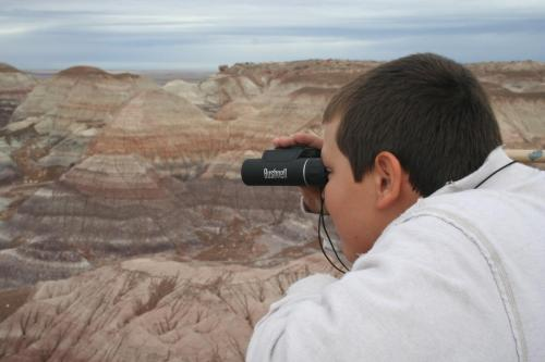 Petrified-Forest-Arizona (16)