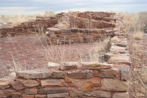Petrified-Forest-Arizona (24)