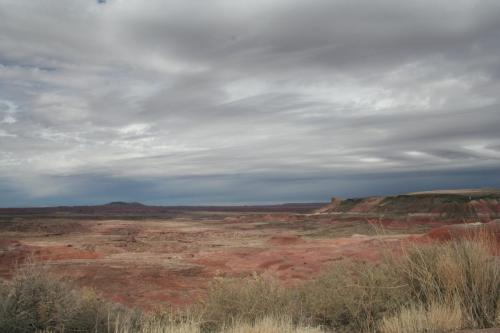 Petrified-Forest-Arizona (28)