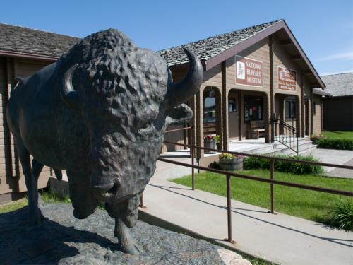 Buffalo Museum